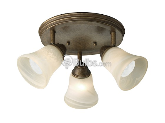 Progress Lighting P3856-86WB Close-to-Ceiling, Three-Light Directional Fixture, Savannah Collection, Burnished Chestnut Finish