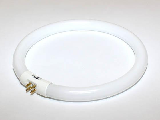 22 Watt 7 1 4 Quot Diameter Daylight White T5 Circline Bulb 22wfsc Cl Bulbs Com