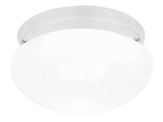Sea Gull Lighting 5328-15 Close-to-Ceiling, Two-Light Fixture, Webster Collection, White Base