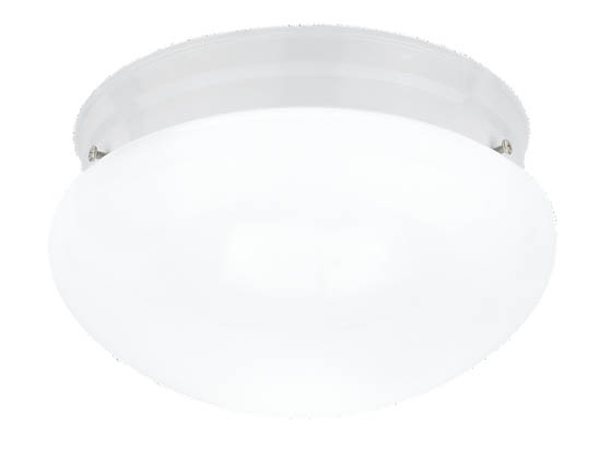 Sea Gull Lighting 5326-15 Close-to-Ceiling, One-Light Fixture, Webster Collection, White Base