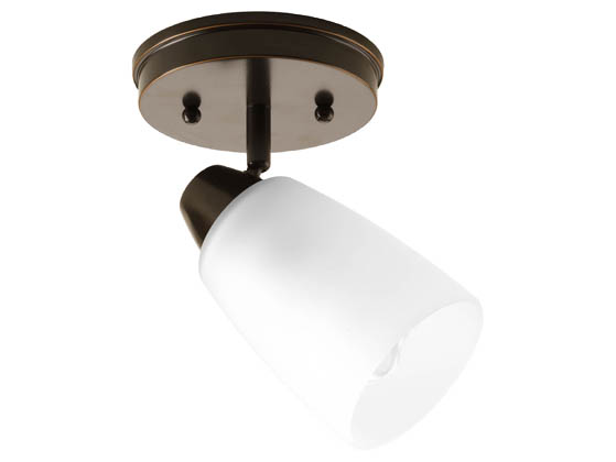 Progress Lighting P3360-20 One-light Wall or Ceiling Mount Directional