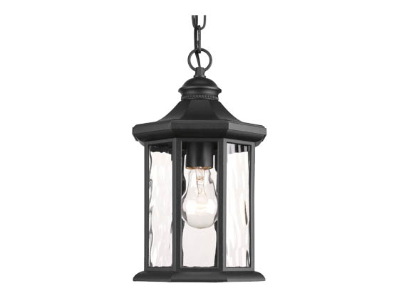Progress Lighting P6529-31 One-light Hanging Lantern