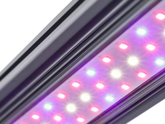KindLED X40FLWR Kind LED X-Series 40 Watt Bar Light With Flower Spectrum