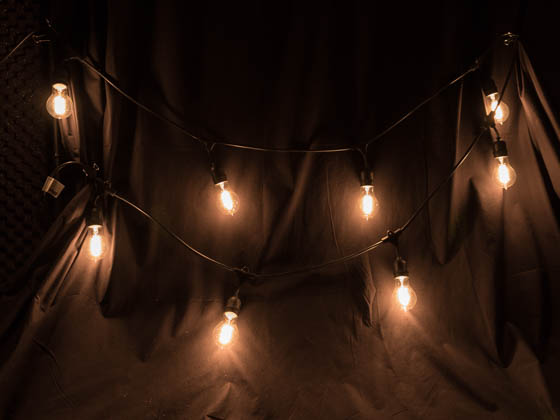 Bulbrite 810007 STRING10_E26_BLACK-NOSA19KT 10 Socket String Lights With Nostalgic A-19 Bulbs