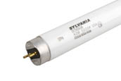 Sylvania SYL21873 FO40/950/60 (40W, 60 inches) 40W 60in T8 Bright White Fluorescent Tube