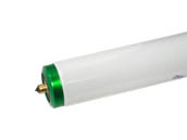 Philips Lighting 236851 F96T8/TL841/PLUS/ALTO Philips 59W 96in T8 Cool White Long Life Fluorescent Tube