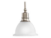 Progress Lighting P5078-09 One-light Stem-Hung Mini-Pendant
