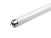Halco Lighting HAL109428 F32T8/865/ECO Halco 32W 48in T8 Daylight Fluorescent Tube