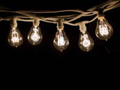 Bulbrite 810053 STRING15/E12/WHITE-NOSA15KT 15 Socket String Lights with 25W Nostalgic Bulbs