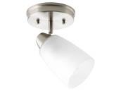 Progress Lighting P3360-09 One-light Wall or Ceiling Mount Directional