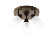 Progress Lighting P3361-20 Three-light Wall or Ceiling Mount Directional