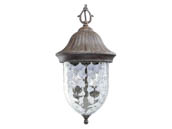 Progress Lighting P5529-87 One-light Hanging Lantern