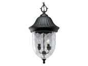 Progress Lighting P5529-31 One-light Hanging Lantern