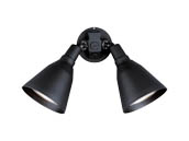Progress Lighting P5203-31 Two Black Painted Adjustable Swivel Floodlights