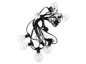 Bulbrite 810054 STRING10_E12_BLACK-G16KT 10 Socket String Lights with Clear E12 base G16 Bulbs Included