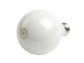 QLS FG25D4050EW Dimmable 4W 5000K G25 Filament LED Bulb, Enclosed Rated