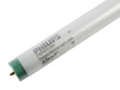 Philips Lighting 479634 (Safety) F32T8/TL950/ALTO 32W (Safety) Philips 32 Watt, 48 Inch SAFETY COATED T8 Bright White Fluorescent Bulb