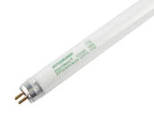 Sylvania 20914 (Safety) FP14/841/ECO (Safety) Safety Coated Pentron 14 Watt, 22 Inch T5 Cool White Fluorescent Bulb