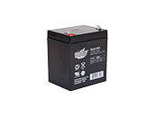 Interstate Battery SLA1055 Interstate Batteries 12V SLA1055 General Purpose Battery, For Use In Exit And Emergency Lighting Fixtures