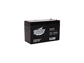 Interstate Battery SLA1075 Interstate Batteries 12V SLA1075 General Purpose Battery, For Use In Exit And Emergency Lighting Fixtures