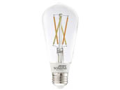 Bulbrite 291120 SL5WST18/W/CL/1P Solana WiFi White Color Adjusted 5.5W Clear Filament ST18 LED Bulb, No Hub Needed, Outdoor Rated