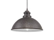 Progress Lighting P550032-103 Englewood One Light Hanging Lantern, Gray Finish