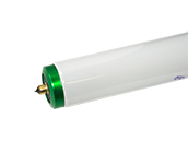 Philips 59W 96in T8 Cool White Long Life Fluorescent Tube (Case of 25)