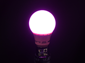 40 Watt Equivalent, 3 Watt 120 Volt Non-Dimmable A-19 Pink LED Light Bulb, Enclosed Rated
