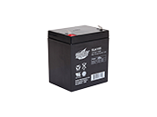 Interstate Batteries 12V SLA1055 General Purpose Battery, For Use In Exit And Emergency Lighting Fixtures