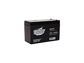 Interstate Batteries 12V SLA1075 General Purpose Battery, For Use In Exit And Emergency Lighting Fixtures