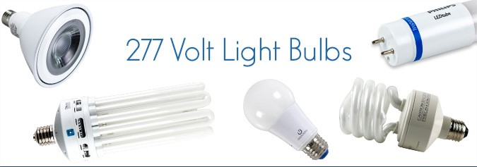 The Light Source | Why 277 volts for lighting? | Bulbs.com