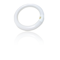 Circline Fluorescent Lamps