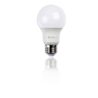 LED A-Style Light Bulbs