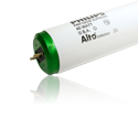 T-12 Linear Fluorescent Tubes