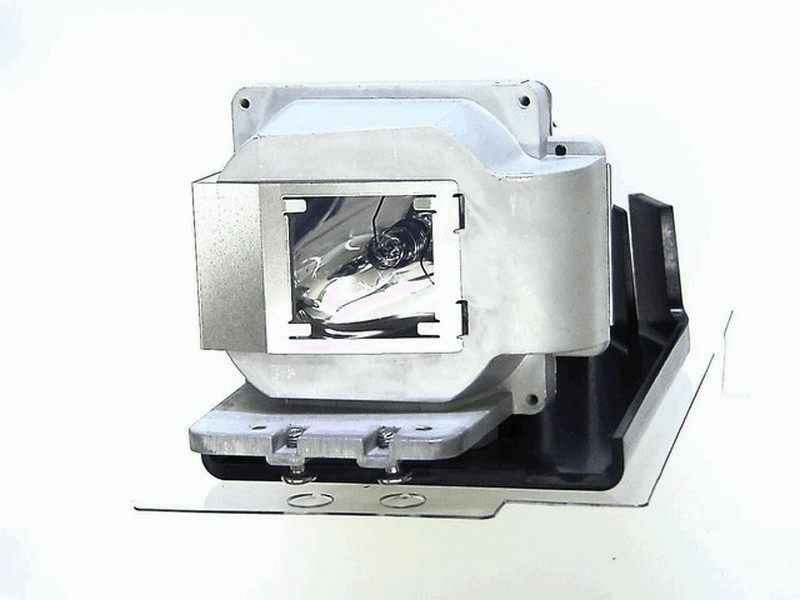 EC.J6100.001 AcerP1165EProjectorLamp